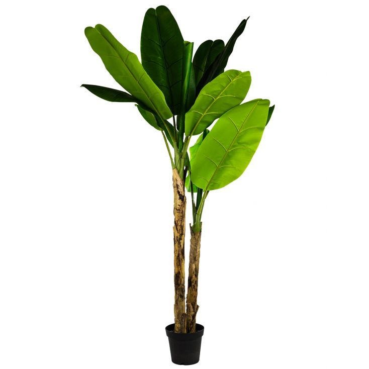 Fake Banana Tree This And That £ 179.00 Store UK, US, EU, AE,BE,CA,DK,FR,DE,IE,IT,MT,NL,NO,ES,SE