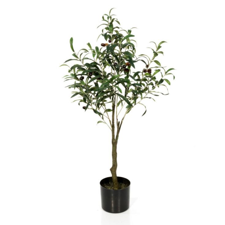 Fake Olive Tree This And That £ 73.00 Store UK, US, EU, AE,BE,CA,DK,FR,DE,IE,IT,MT,NL,NO,ES,SE
