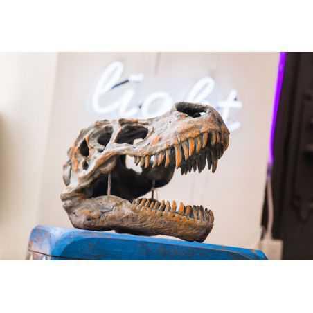 T - Rex Dinosaur Skull Retro Ornaments Smithers of Stamford £ 81.00 Store UK, US, EU, AE,BE,CA,DK,FR,DE,IE,IT,MT,NL,NO,ES,SE