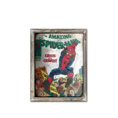 Spider-man Picture Frame