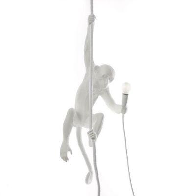 Ceiling Monkey Lamp