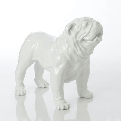 Chet The Big White Bulldog