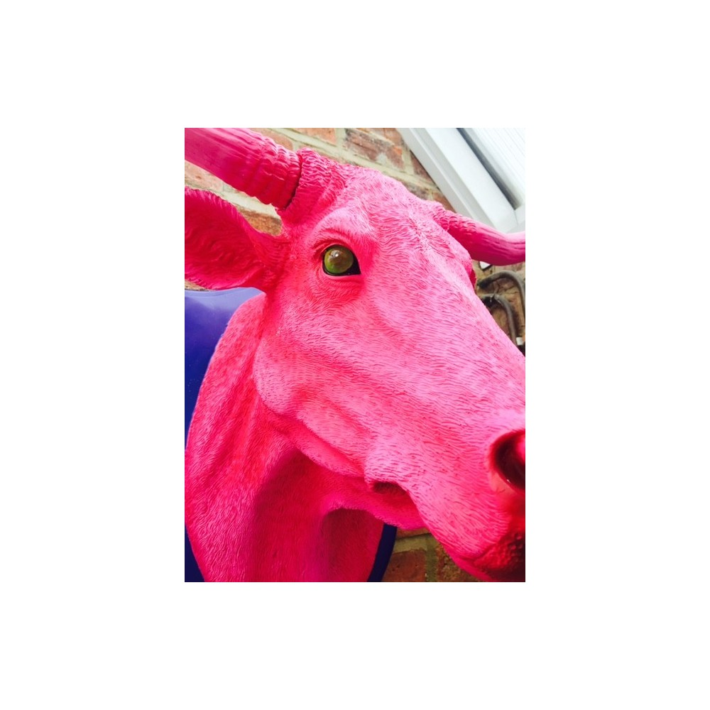 Pink Bulls Ox Head The Most Hot Pink Wall Art You Can Find