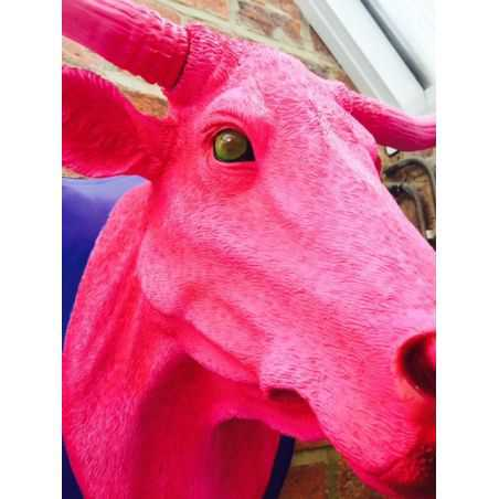 Pink Bull Trophy Head Smithers Archives Smithers of Stamford £ 194.00 Store UK, US, EU, AE,BE,CA,DK,FR,DE,IE,IT,MT,NL,NO,ES,SE