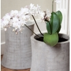 Concrete Planter Home Smithers of Stamford £ 108.00 Store UK, US, EU