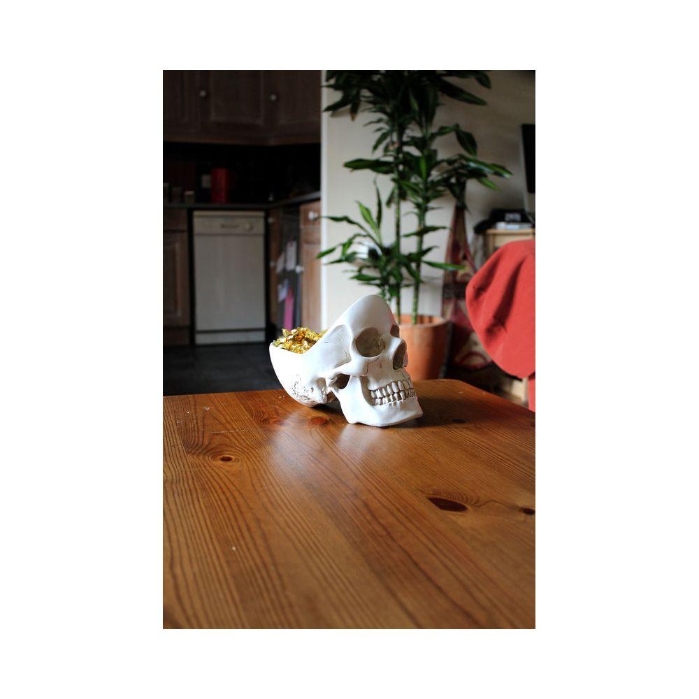 Things To Buy Boyfriend For Birthday Skull Gift Ideas