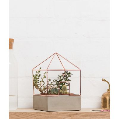Concrete House Plant Christmas Gifts £ 30.00 Store UK, US, EU