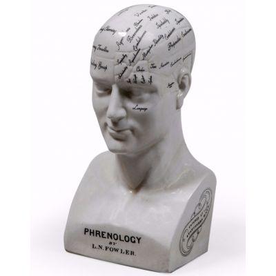 Phrenology Head Retro Ornaments Smithers of Stamford £ 65.00 Store UK, US, EU, AE,BE,CA,DK,FR,DE,IE,IT,MT,NL,NO,ES,SE