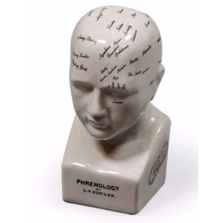 Phrenology Head Smithers Archives Smithers of Stamford £ 65.00 Store UK, US, EU, AE,BE,CA,DK,FR,DE,IE,IT,MT,NL,NO,ES,SE