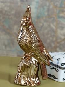 Gold-cockatoo