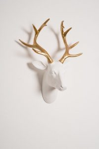 white stags head