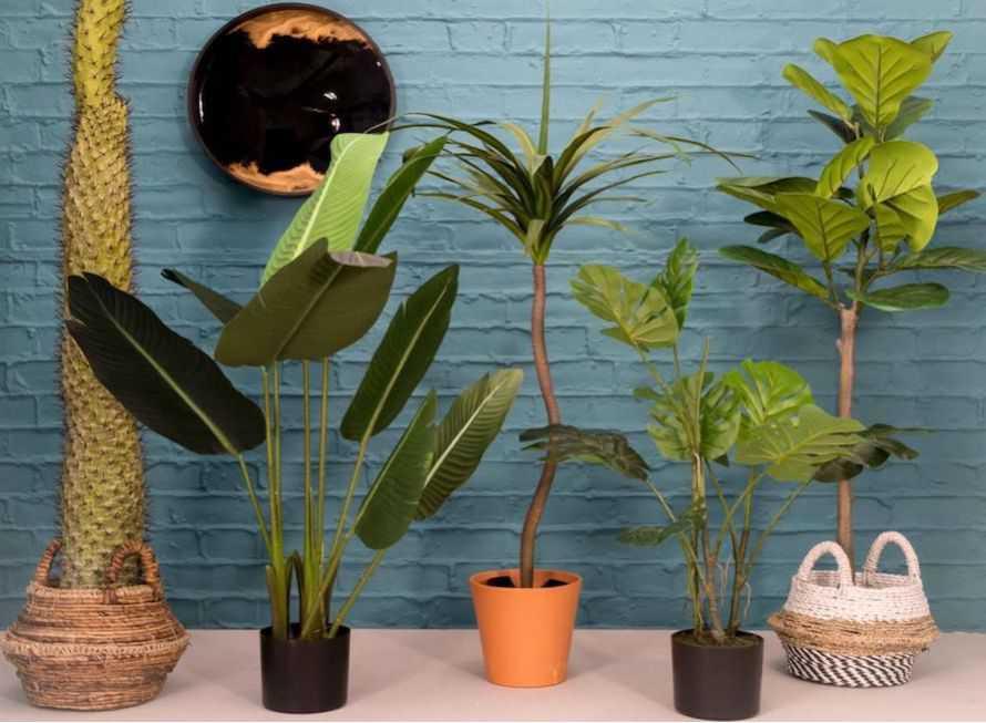 Best Fake Plants - Trees & Artificial Outdoor * Indoor